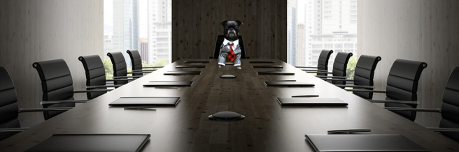 2_boardroom tie little